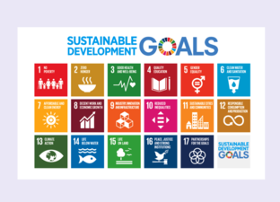 SDG - Introduction (Primary)