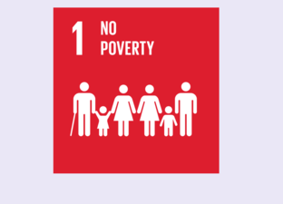 SDG 1 - No Poverty (Primary)