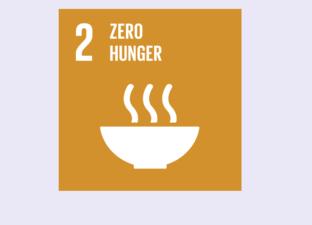 SDG 2 - Zero Hunger (Primary)