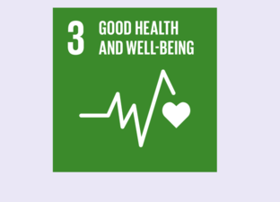SDG 3 - Good health and well-being (Primary)