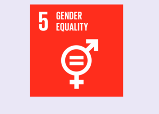 SDG 5 - Gender equality (Primary)