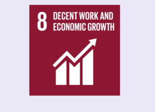 SDG 8 - Decent work & Economic Growth (Primary)