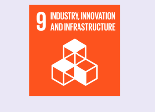SDG  9 - Industry, innovation & infrastructure (Primary)