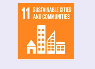 SDG 11 - Sustainable cities & communities (Primary)