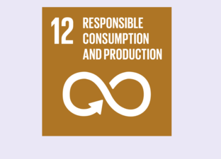 SDG 12 - Responsible consumption & production