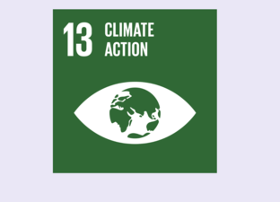 SDG 13 - Climate action (Primary)