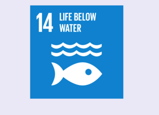 SDG 14 - Life below water (Primary)