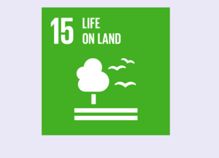 SDG 15 - Life on land (Primary)