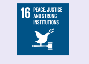 SDG 16 - Peace, justice & strong institutions (Primary)