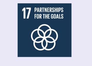 SDG 17 - Partnerships for the goals (Primary)