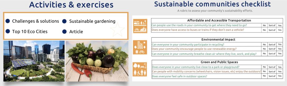 SDG 11 - Sustainable cities & communities (Primary)