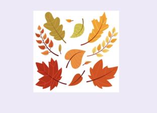 Autumn starter activities